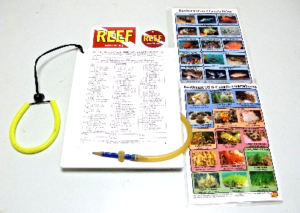 All Participants use the Survey & Fish Monitoring Kit produced by Reef Environmental Education Foundation